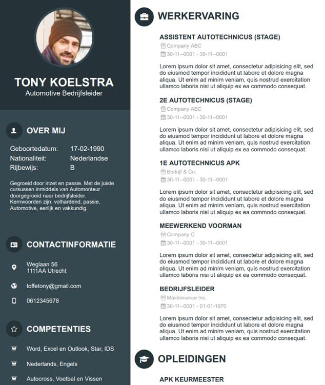 Autobranche CV Voorbeeld